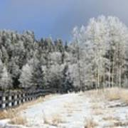 Winters Day In The Mountains Art Print