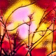 Winter's Glow Art Print