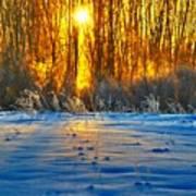 Winters Morning Art Print