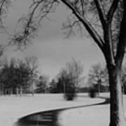 Winter's Path Art Print