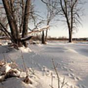 Winters Tracks Art Print