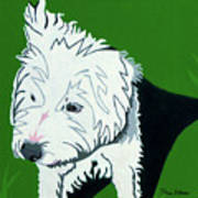 Wirehaired Jack Russell Terrier Art Print