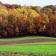 Wisconsin Colors Art Print