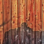 Within A Wooden Fence Art Print