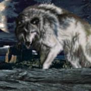 Wolf At Night Art Print