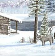 Wolfs In Winter Art Print