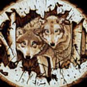 Wolves In Hiding Art Print