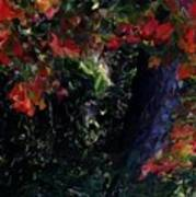 Wonder Tree Detail 2 Art Print