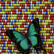 Wonderful Green Butterfly Art Print