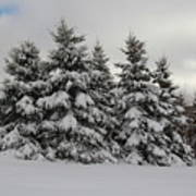 Wonderful Winter Art Print