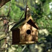 Wood Birdhouse Art Print
