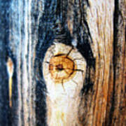Wood In Macro #1 Art Print