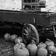 Wood Wagon And Pumpkins Black And White Art Print