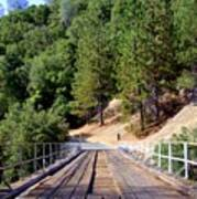 Wooden Bridge Over Deep Gorge Art Print