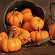 Wooden Bucket Filled With Tiny Pumpkins Art Print
