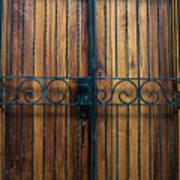 Wooden Door 2 Art Print