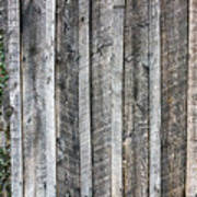 Wooden Fence And Ivy Art Print