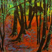 Woodland At Watkins Glen New York Art Print