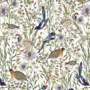 Woodland Edge Birds Art Print