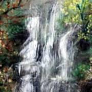 Woodland Falls Art Print