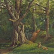 Woodland Scene With Rabbits Art Print