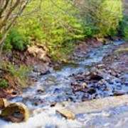 Woodland Stream And Waterfall, Hickory Run, Pocono Mountains Art Print
