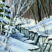 Woodland Stream Art Print