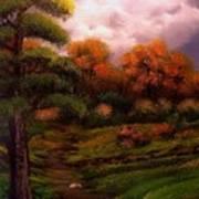 Woodland Trail Art Print