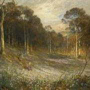 Woodlands Gay With Lady Smocks Art Print