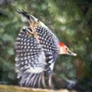Woodpecker Wings Art Print