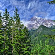 Woods Surrounding Mt. Rainier Art Print