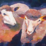 Wool Marketing Board Art Print
