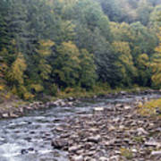 Worlds End State Park Loyalsock Creek Art Print