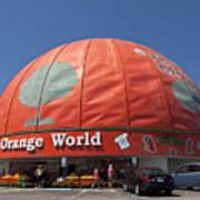 World's Largest Orange Art Print