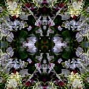 Wornhole Mandala Art Print