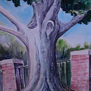Wortham Oak Art Print