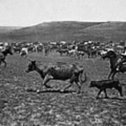 Wyoming: Cowboys, C1890 Art Print
