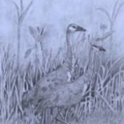 Wyoming Sandhill Cranes Art Print