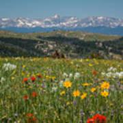 Wyoming's Winds Art Print
