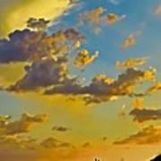 Y Cactus Sunset 10 Art Print
