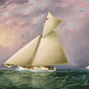 Yacht Race In New York Harbor Art Print
