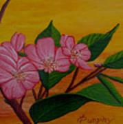 Yamazakura Or Cherry Blossom Art Print