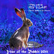 Year Of The Rabbit 2011 . Square Blue Art Print