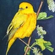 Yelllow Warbler Art Print