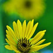 Yellow And Green 3 Art Print