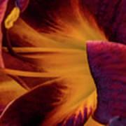 Yellow And Purple Art Print