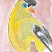 Yellow Bird 56 Art Print