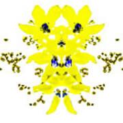 Yellow Blue Blossoms Art Print