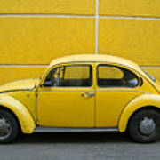 Yellow Bug Art Print