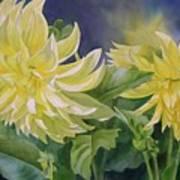 Yellow Dahlia Duet Art Print